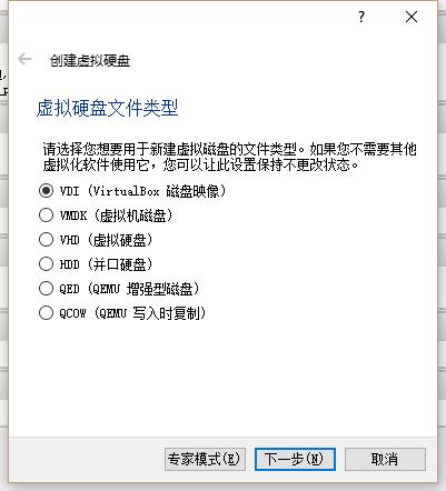 虚拟硬盘文件类型选择VDI