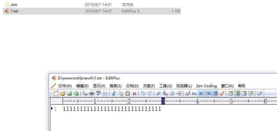 进入目录branch,新建文件1.txt