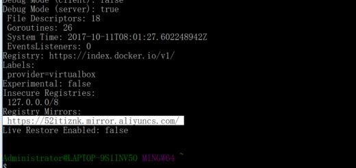再次运行命令:docker info,发现镜像加速器配置成功