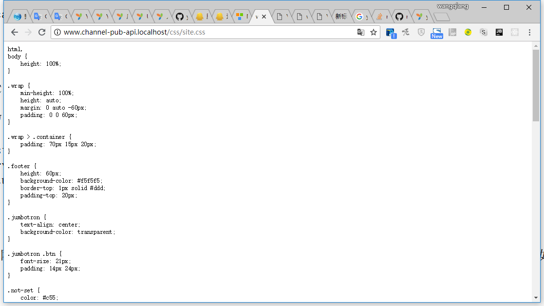 打开网址:http://www.channel-pub-api.localhost/css/site.css ,前端静态资源可以成功访问
