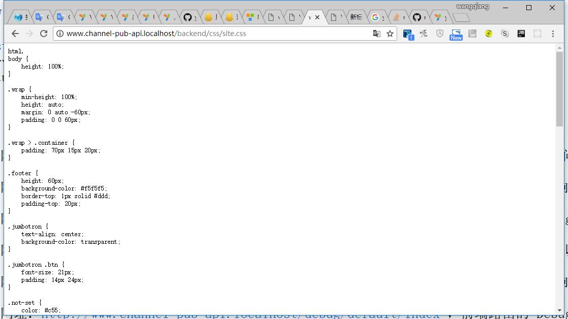 打开网址:http://www.channel-pub-api.localhost/backend/css/site.css ,后端静态资源可以成功访问