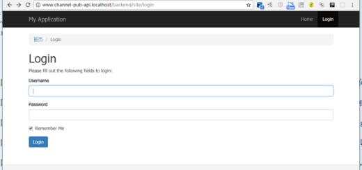 打开网址:http://www.channel-pub-api.localhost/backend/site/login ,后端路由符合预期,成功响应