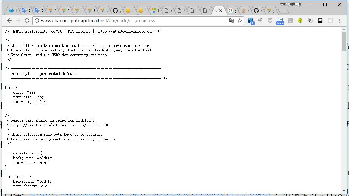 打开网址:http://www.channel-pub-api.localhost/api/code/css/main.css ,接口静态资源可以成功访问