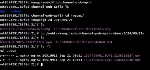 升级至开发环境(CentOS)后,复制文件成功