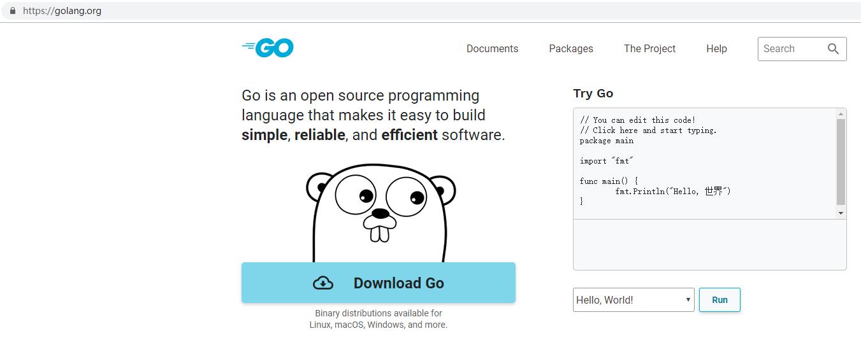 在 Chrome 中打开网址:https://golang.org/ ,可以正常打开