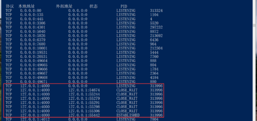 在 PowerShell 中输入:netstat -ano,查看所有的端口占用情况,看到程序中的端口(4000)已经在另一个程序中处于活动状态(正在使用中)