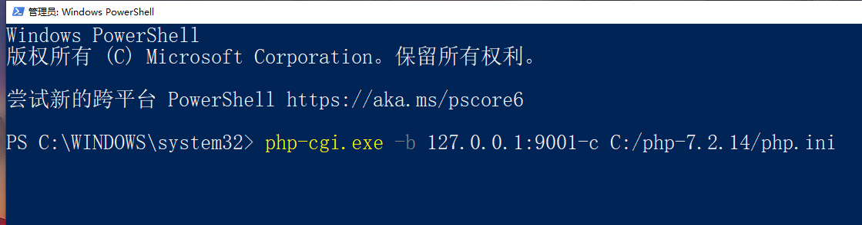 新开 PowerShell 窗口,执行 php-cgi.exe -b 127.0.0.1:9001-c C:/php-7.2.14/php.ini