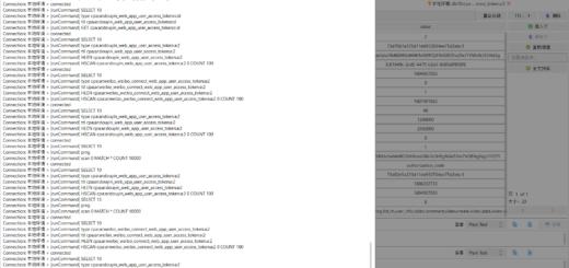 查看 GUI for Redis 的日志,以确认真正执行的命令。