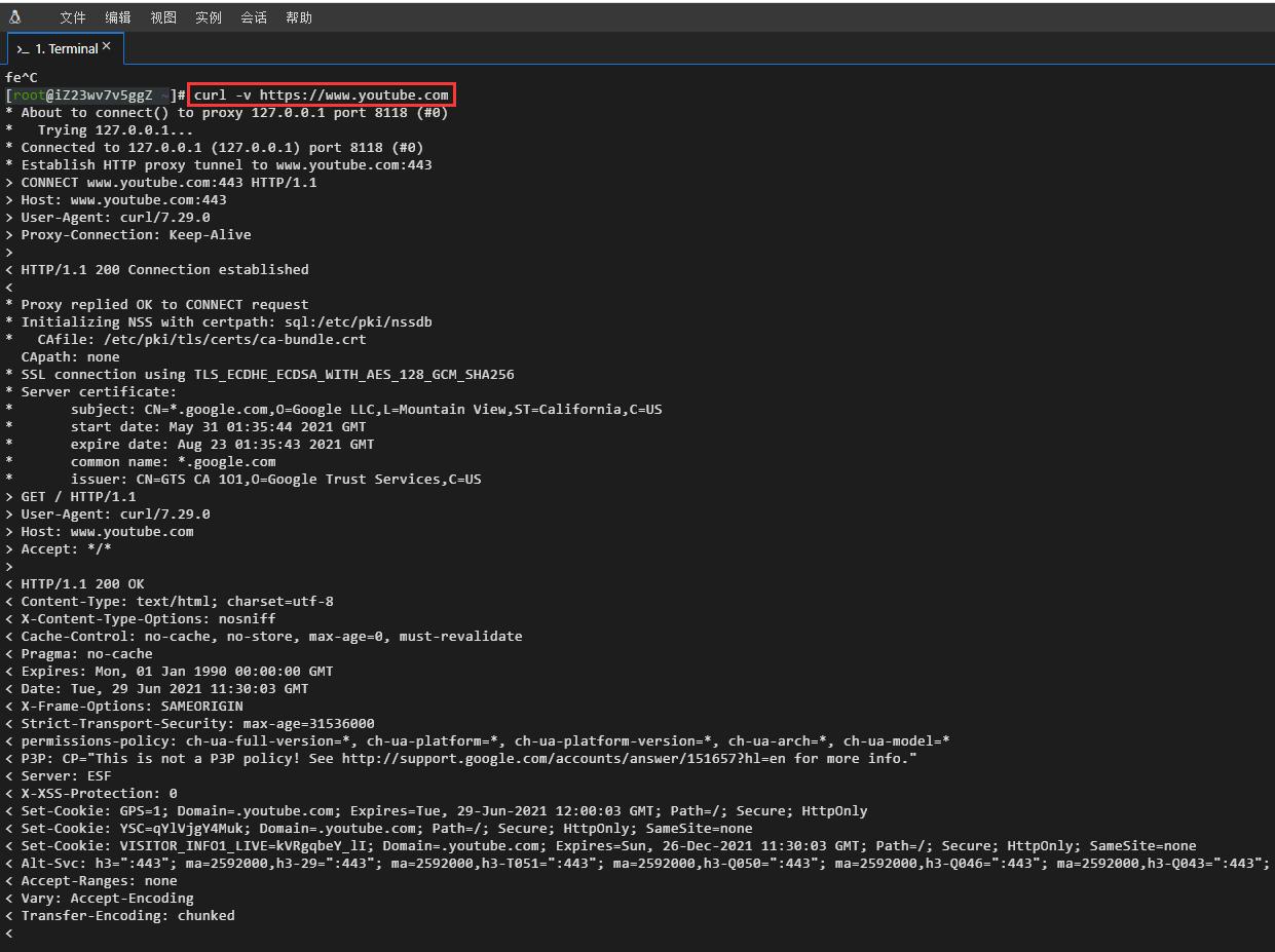 测试阿里云服务器基于 curl http 请求 http://httpbin.org/ip、https://www.google.com、https://www.youtube.com。连接成功