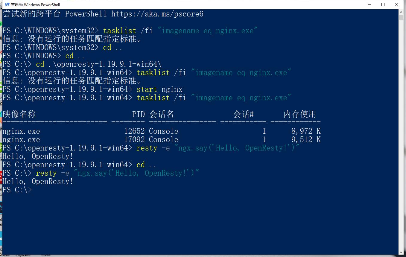 重启电脑。运行 resty 脚本。后续计划卸载原生的 Nginx 软件。因为两者功能重叠得厉害。